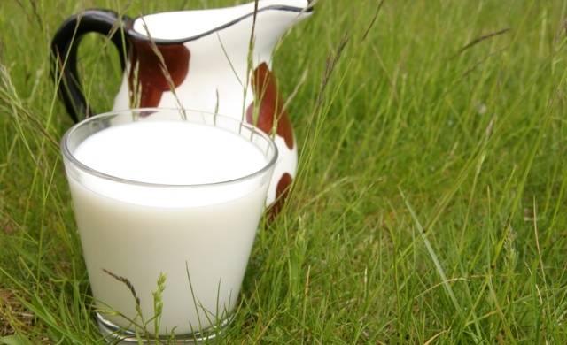 Молоко снимает итоксикацию после бурного застолья